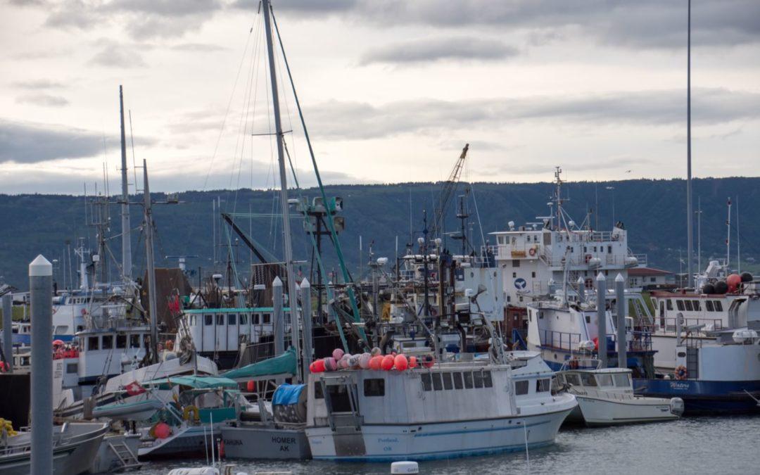 Port de Homer