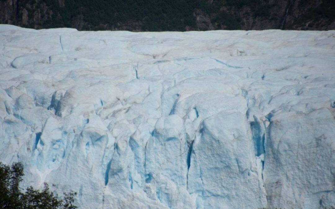 Devant Bainbridge Glacier