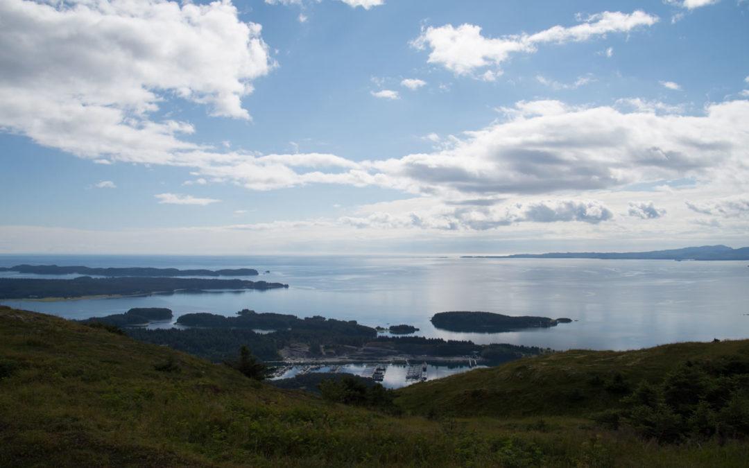 Kodiak Harbor depuis le Mt Pilar