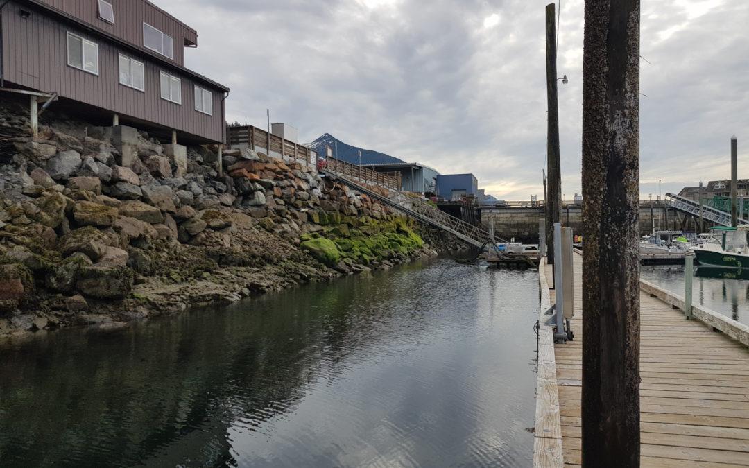 Marées à Bar Harbor ketchikan