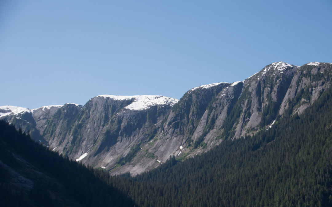 Glacier Misty fjord