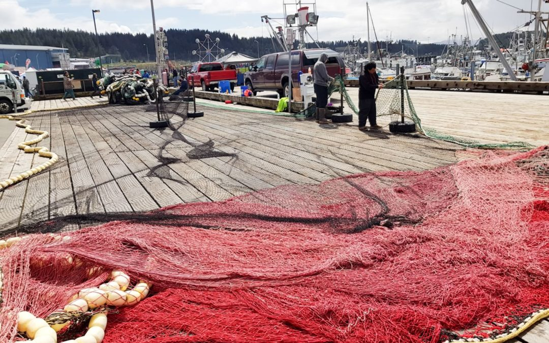 réparation du filet de pêche au saumon.