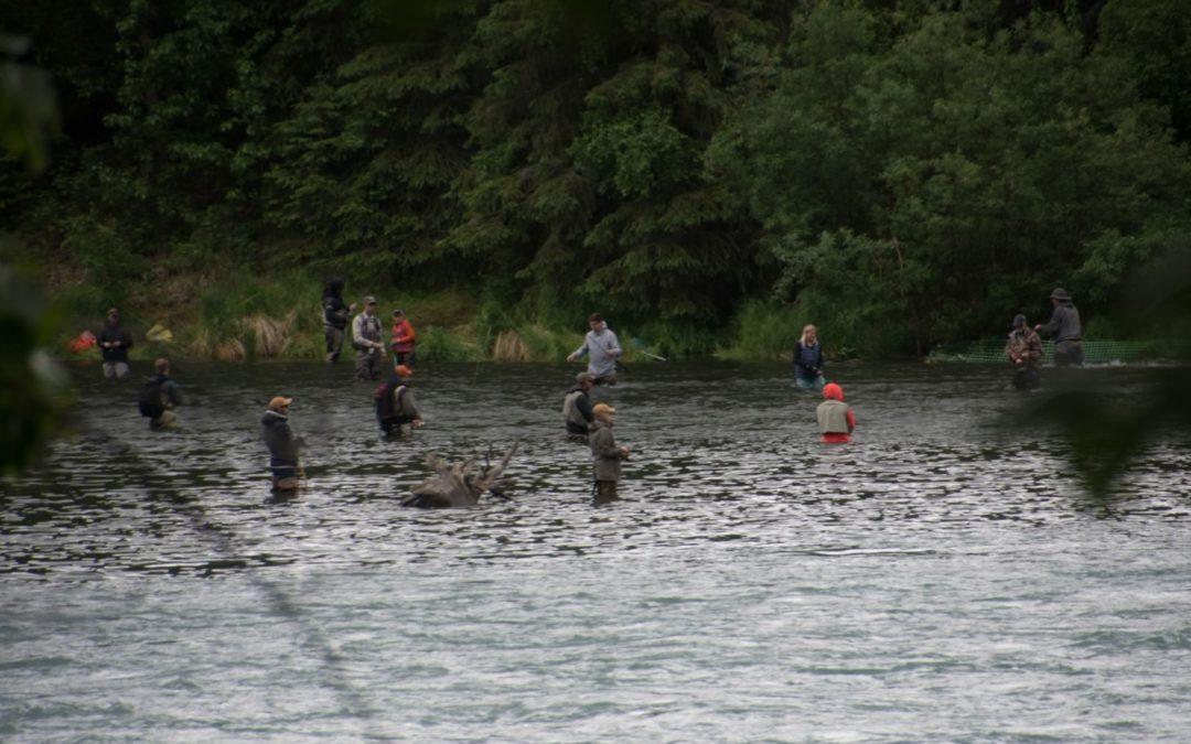 Pêcheurs de saumon